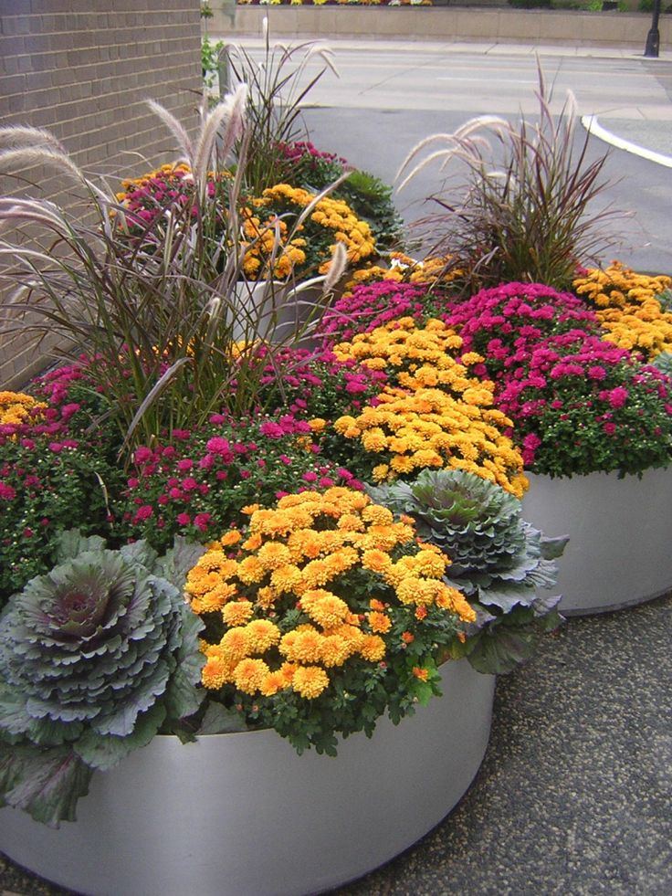 fabulous fall flower containers!!!!