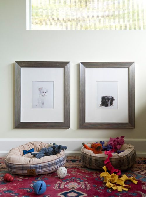 Such a FUN idea - hang your pet's custom framed portrait above their bed. What personality?!? #art