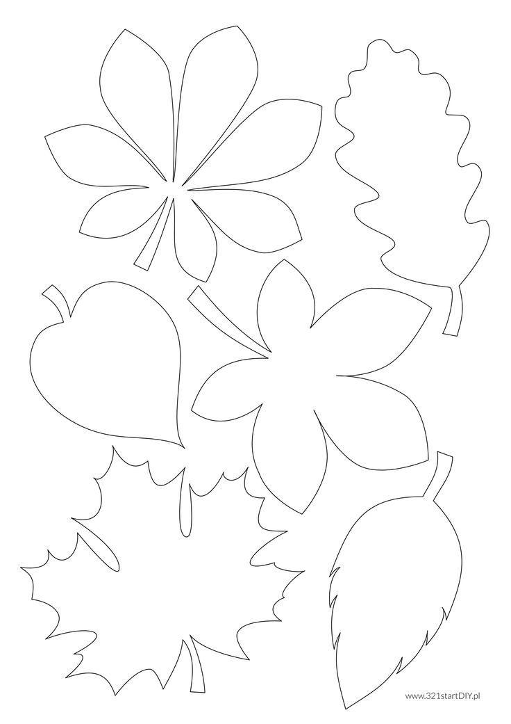 Znalezione obrazy dla zapytania jesienne liście s…