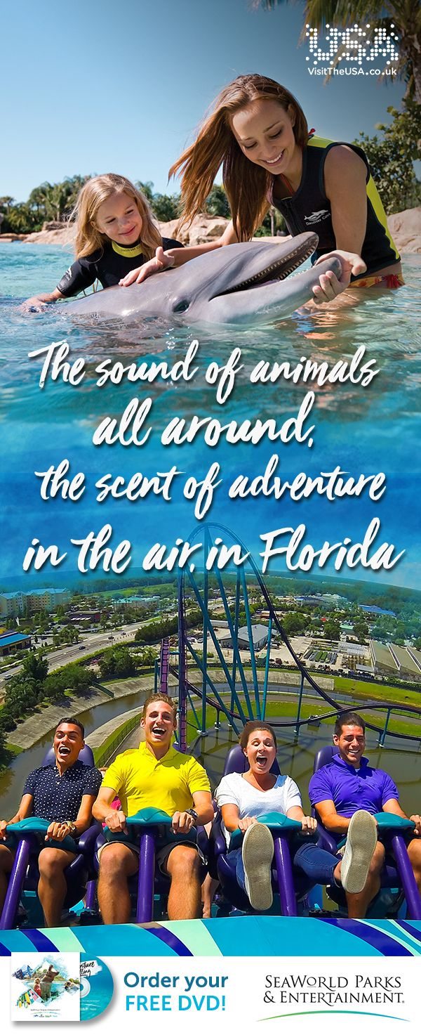Lose yourself on incredible wildlife-inspired thrill rides, enjoy a once-in-a-lifetime animal encounter or choose to simply float the day away. Adventure is calling.