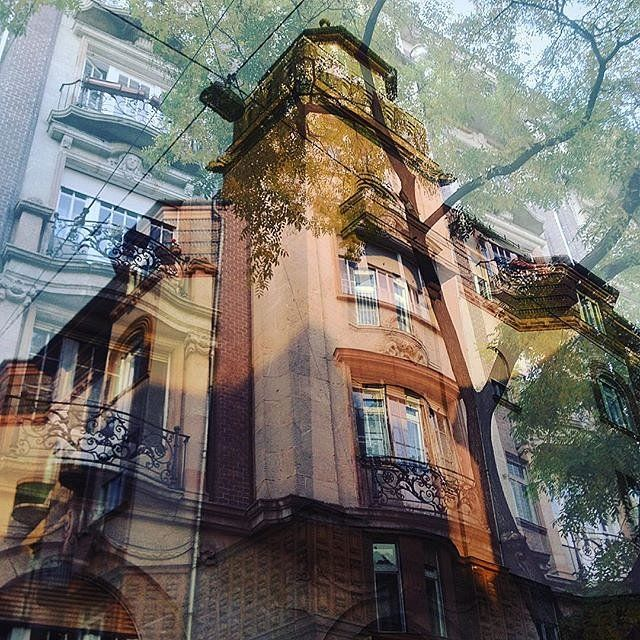 Building meets building  double exposure #doubleexposure #multiexposure #multipleexposure #Budapest #building #buildings #windows #trees #hungary #D_Expo #dxe #dxp #twocitiesbudapest #craighullphoto #doubleexposeeurope