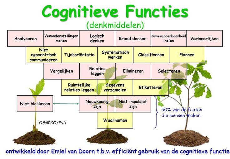 Cognitieve Functies piramide Nederlands groeien EvD