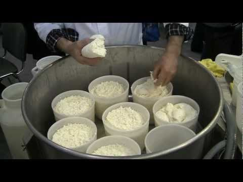 Приготовление сыра из козьего молока в домашних условиях - YouTube