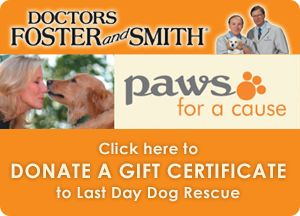 """Donate a Gift Certificate to Last Day Dog Rescue Thank you for your generous donation to this animal shelter. Your gift will help provide essential healthcare, medications, and comfort to animals in need while they wait for their new home. 1. Enter your name (or enter as """"anonymous"""", if you wish)  2.Enter your donation amount  3.Proceed to Checkout  4.During Checkout, change the """"Ship To"""" address to the Shelter of your choice.  5.Finalize your order  6.Save receipt for tax deduction purposes"""