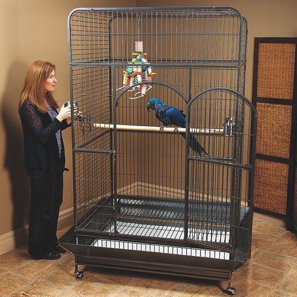 Best 5 Prevue Bird Cages Review For Your Fluffy Parrot In 2020 In 2020 Macaw Cage Parakeet Cage Large Parrot Cage