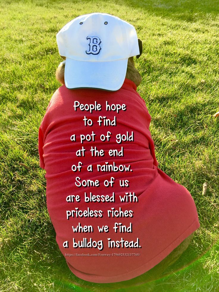 06Apr16 Fenway - Bulldogs - Quotes - Blessings - Love - Rainbow - Pot of Gold - Red Sox - Baseball