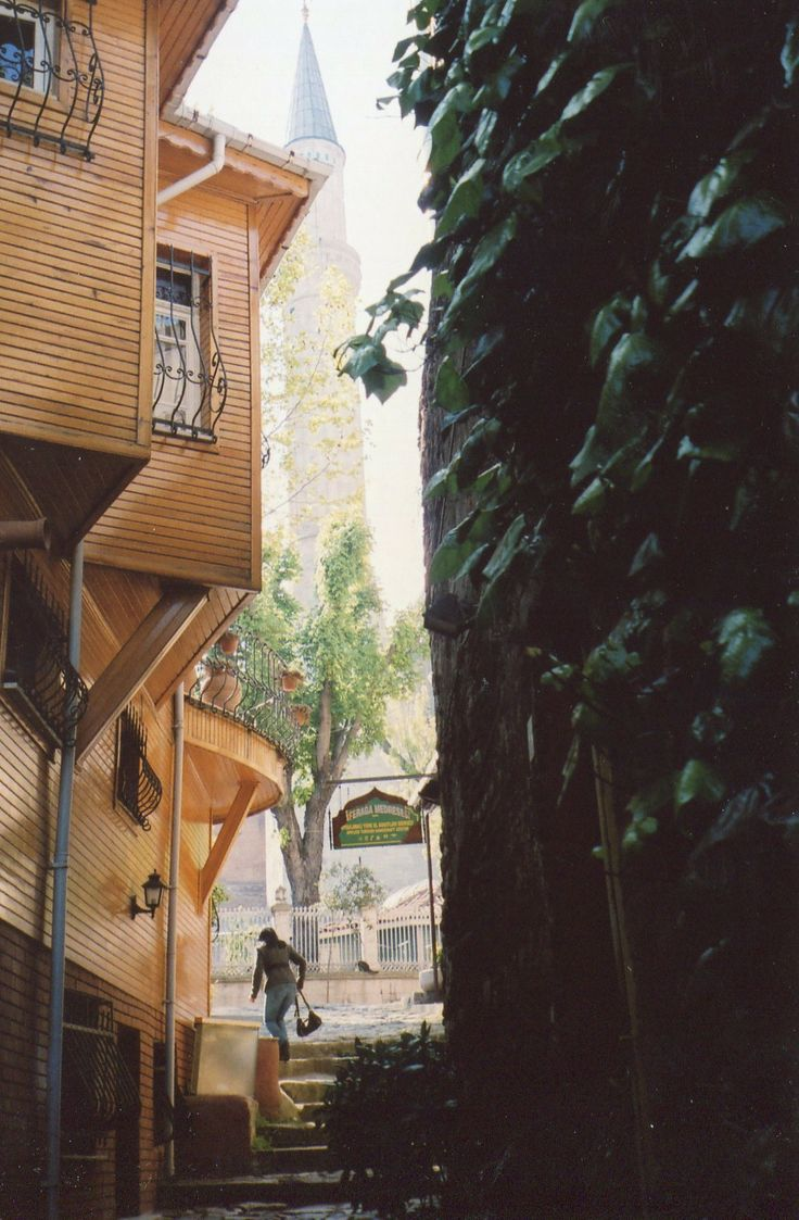 Back streets in Istanbul are full of intrigue.