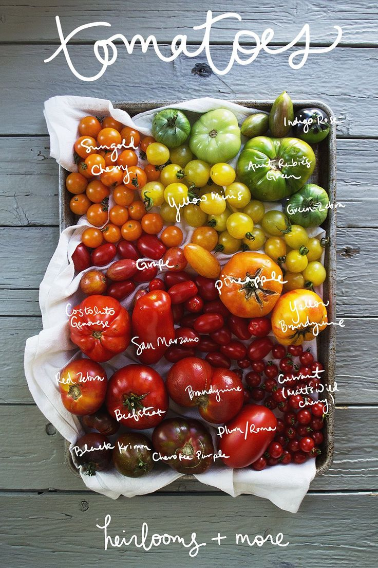 Tomatoes come in all different shapes, colors, sizes, and flavors. Get to know each member of the delicious family with this guide. via @youngaustinian