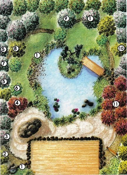 The Japanese Garden Plan;  This Japanese garden consists of three distinct areas.   The first is the wooden deck which has integrated the garden with the home.  The second, a dry stone garden is used to symbolize the ruggedness and strength of nature. And the third, The water in our pond reflects the natural landscape, symbolic of the spiritual reflections your visitors will experience.