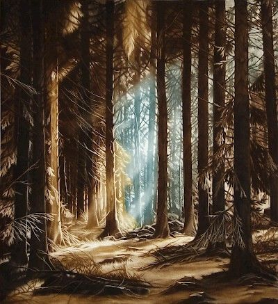 Susan Jameson : Forest Clearing at Davidson Galleries