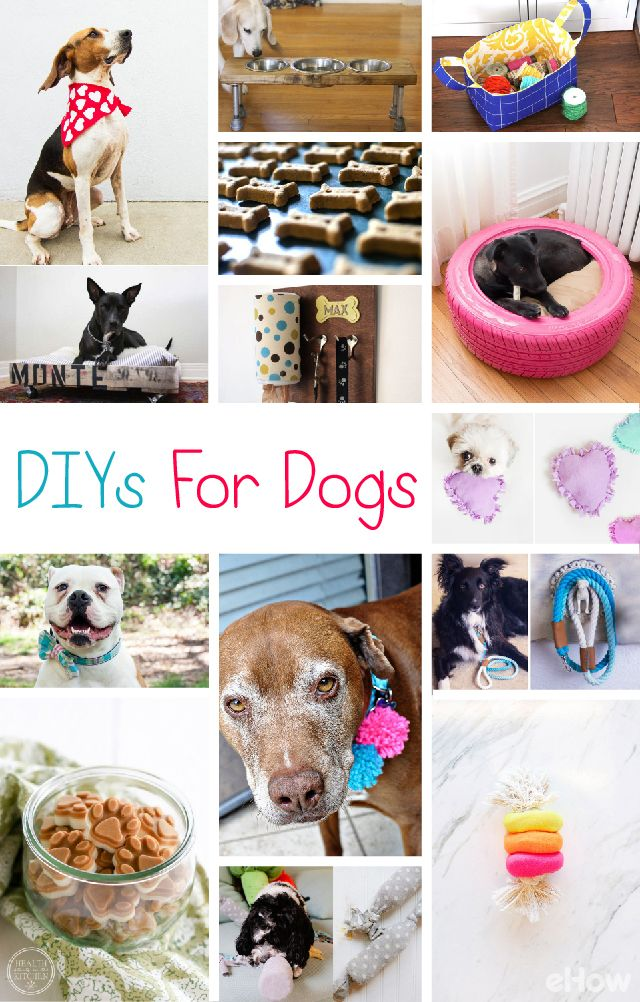 217 best puppy n pet pins images on pinterest dog cat dog stuff diys for new dog owners solutioingenieria Gallery