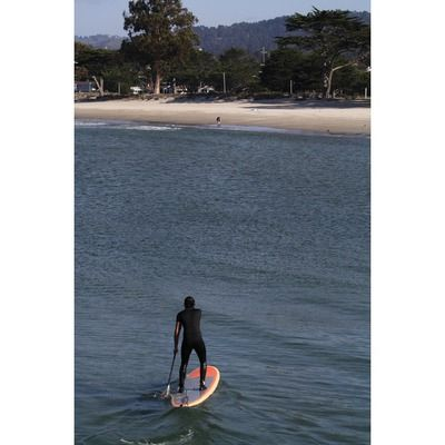 Paddle Boarding is a fun way to explore the Monterey Bay. Don't forget to rent or bring a wetsuit!