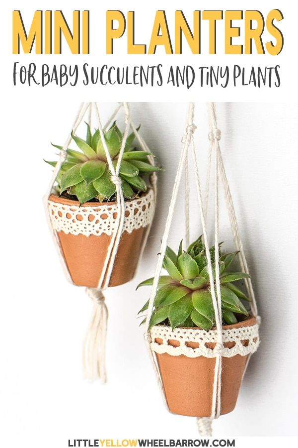 Mini Succulent Pots You Can Make In A Snap Succulent Pots Cheap Plant Pots Succulents