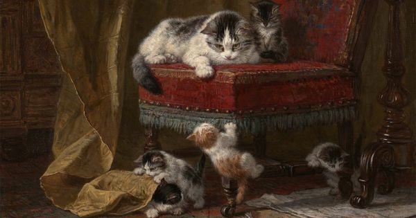 Sanat Dünyasına İlham Veren Kediler #kedi #edebiyat #şiir
