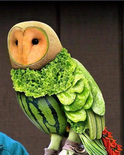 Fruit & Vegetable Owl Carving - wow!