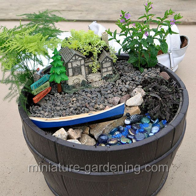 1591 best fg containers images on pinterest fairies garden miniature gardens and mini gardens - Dish garden containers ...