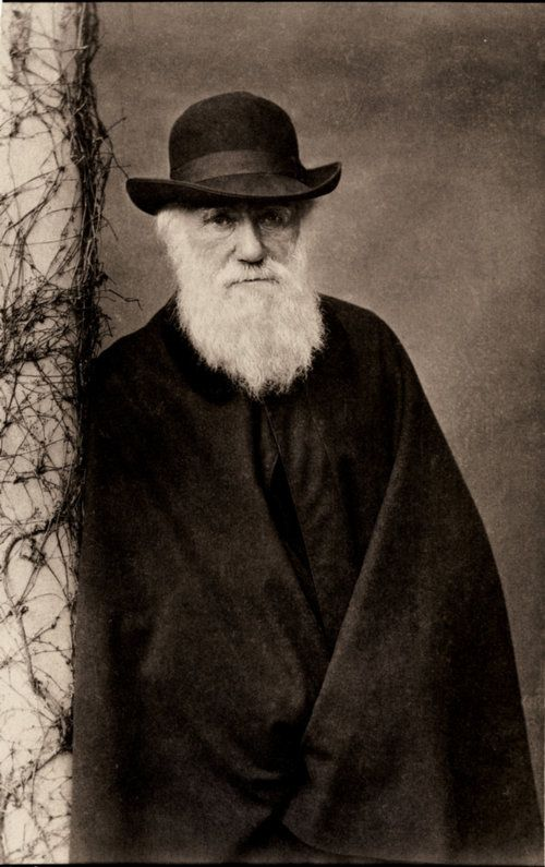 "Charles Darwin 1809 - 1882 English naturalist. Proposed the theory of natural selection in evolution. Wrote famous "" On Origin of Species"". 5 year study voyage on the ship ""Beagle"".  Honoured with burial at Westminster Abbey. Described as one of the most influential figures in human history."