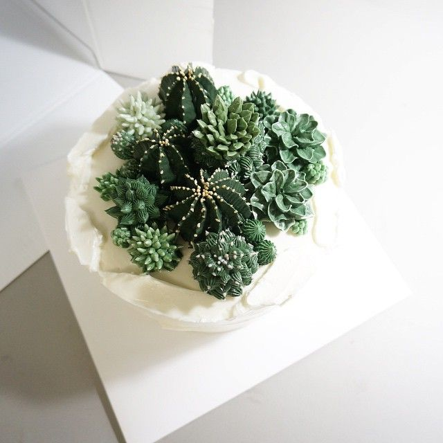 Lil succulents cupcake