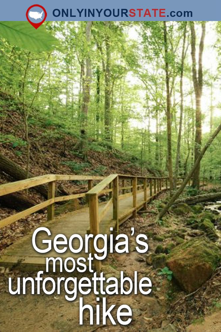 Travel   Georgia   Attractions   USA   East Coast   Outdoor   Adventure   Easy Hikes   Trails   Hiking   Nature   Beautiful Places   Natural Wonders   Hidden Gems   Scenic Hikes   Cascade Springs   Nature Preserve   State Parks   Atlanta   Forest   Things To Do   Day Trips   Places To Visit   Bucket List   Waterfalls   Unforgettable Hike   Georgia Trails