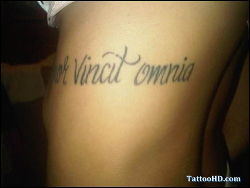 526 best images about tattoo gallery design and ideas on for Latin scripture tattoos