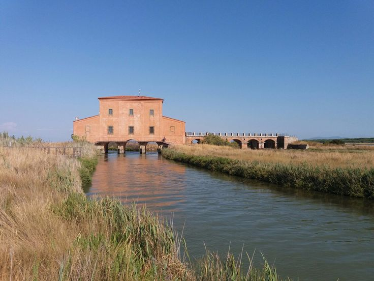**Riserva Naturale Diaccia Botrona (wetland) - Castiglione Della Pescaia, Italy