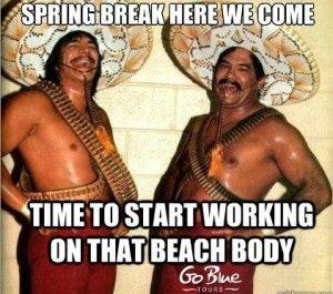 18 best images about spring break memes on pinterest
