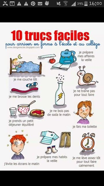 Routine quotidienne