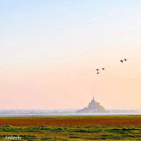 Sunset sur la 7e Merveille du Monde (@Anlorh) | Twitter  #MontSaintMichel #Normandie #France