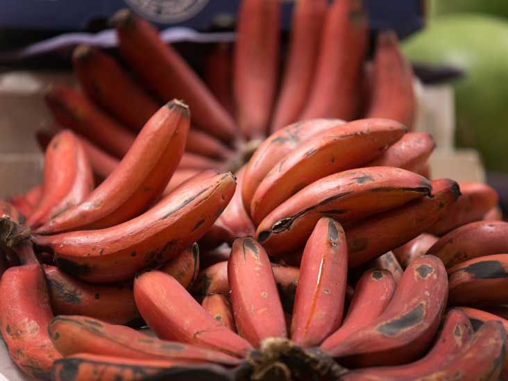 7 Red Banana Benefits And How They Differ From Yellow Ones