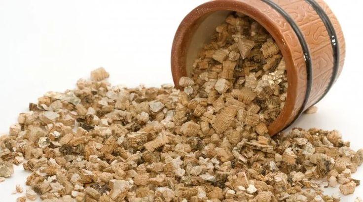 Что такое вермикулит, особенности его применения для растений, основные виды, свойства и состав. Плюсы и минусы использования вермикулита в домашних условиях