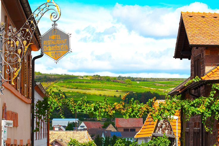 3 Tage im 4* Pfalzhotel Asselheim #Land #Rheinland-Pfalz #Dolce #Vita #Deutschland #Berg #Wellness #relax #Sommer #Weinberg #travadorcom