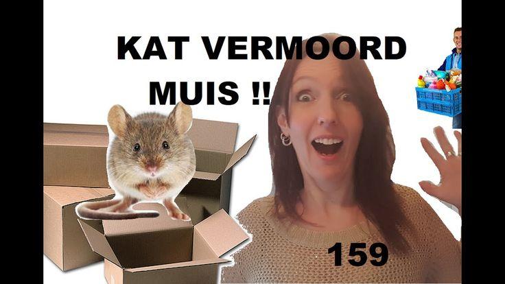 KAT VERMOORD MUIS  en heel veel unboxing to do # 159