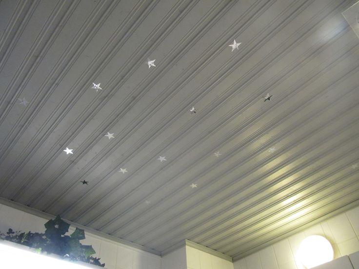 Diy Dc-fix roof star toilet room