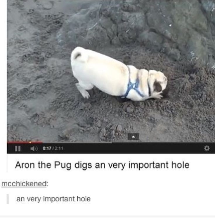 Well I am very impressed with the very important hole.