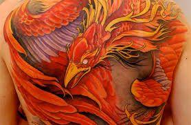 fenix renascendo das cinzas tattoo feminina - Pesquisa Google