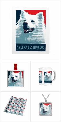 American Eskimo by Hope Dogs