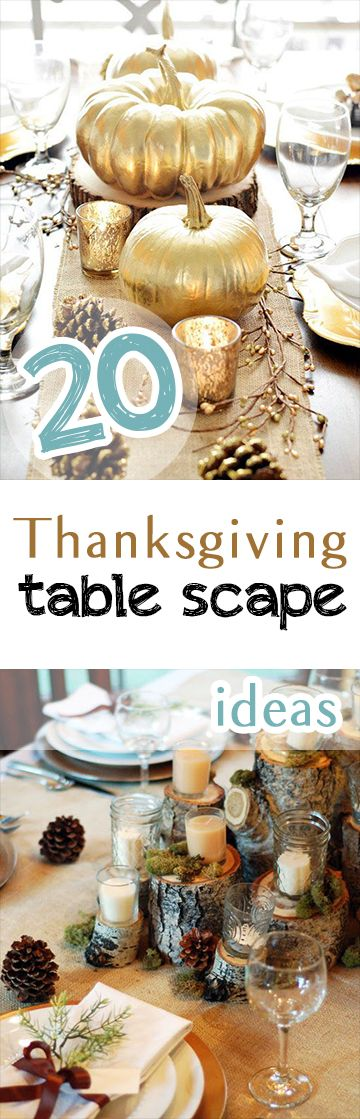 This Thanksgiving, make any of these fantastic table scape ideas!