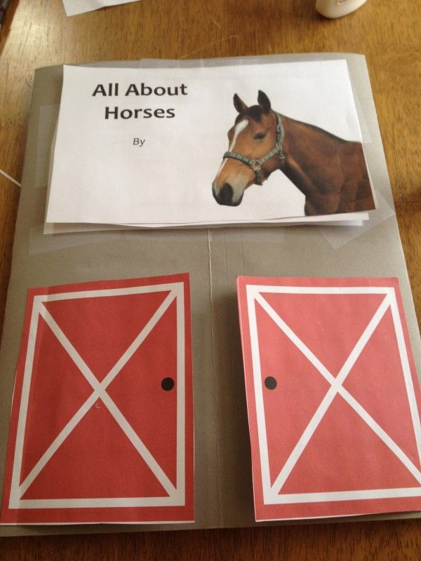 Our First Lapbook Project - All About Horses