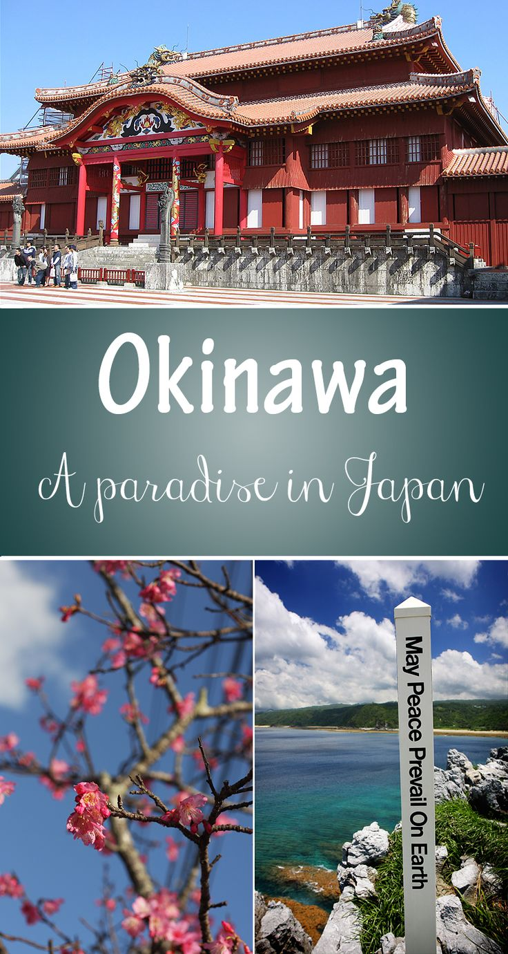 Okinawa is a beautiful island that has so much to offer! #travel