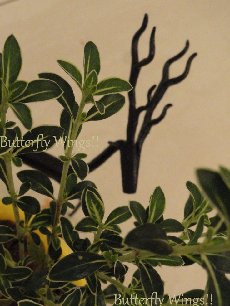 Cast Iron Gazelles now add that rustic feel to ur bedside tables   #homedecor #bedside #gazelles