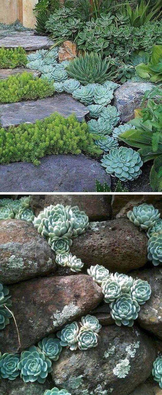 Amazing Garden Decoration Ideas for Your Home