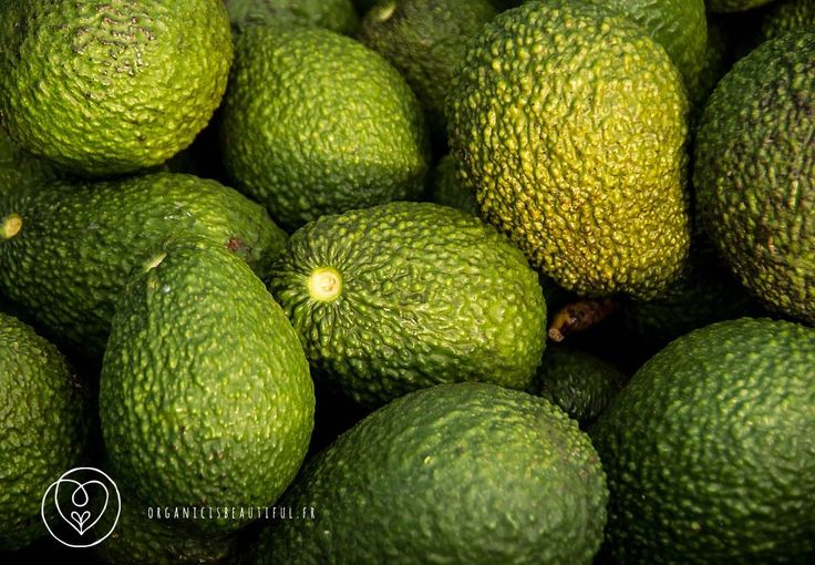 SAY YES TO AVOCADO OIL – SKINCARE TIPS