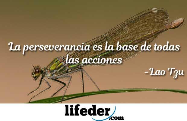 Perseverancia-03