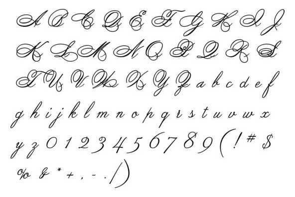 Calligraphy Tutorial Script Alphabet