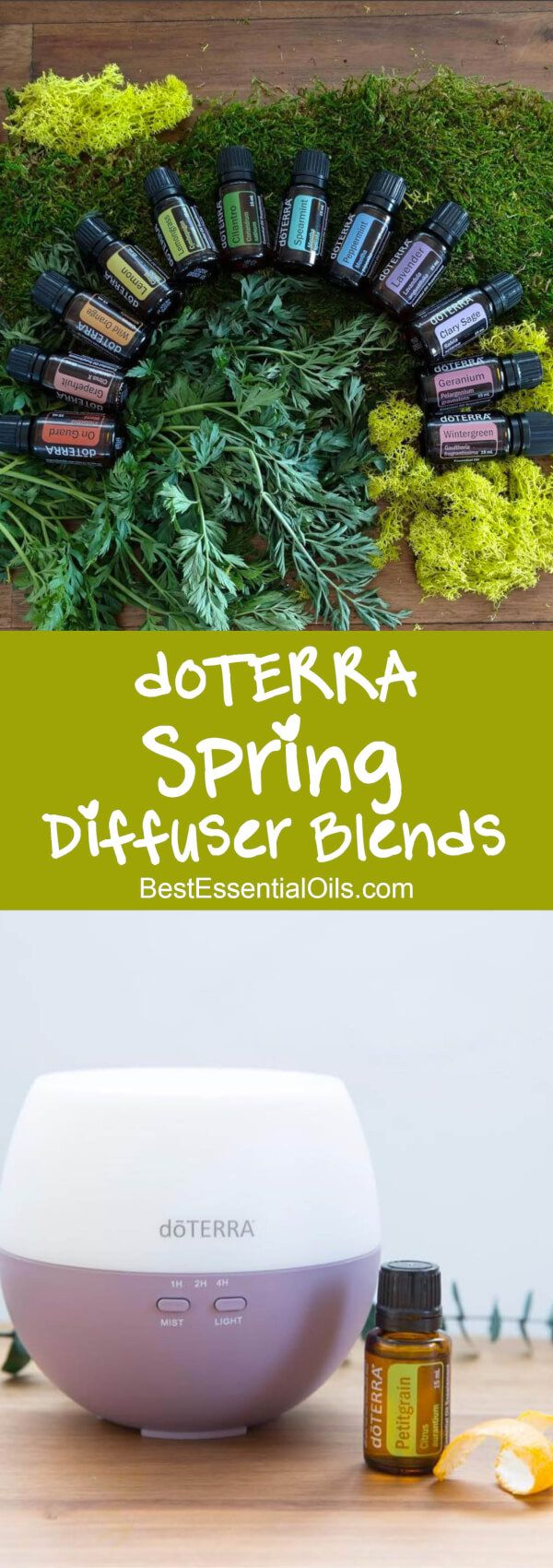 I don't know about you, but I start dreaming about Spring right after Christmas. Yes. There are nice diffuser blends and there's something to be said for living/diffusing in the current. But, come on! These spring diffuser blends really help with my spring fever. They let the smells of spring in my house, without the …