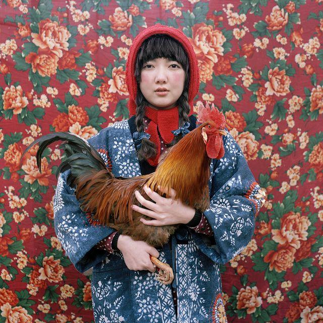 Liu Shuwei forMomo Wang (via Art Sponge)