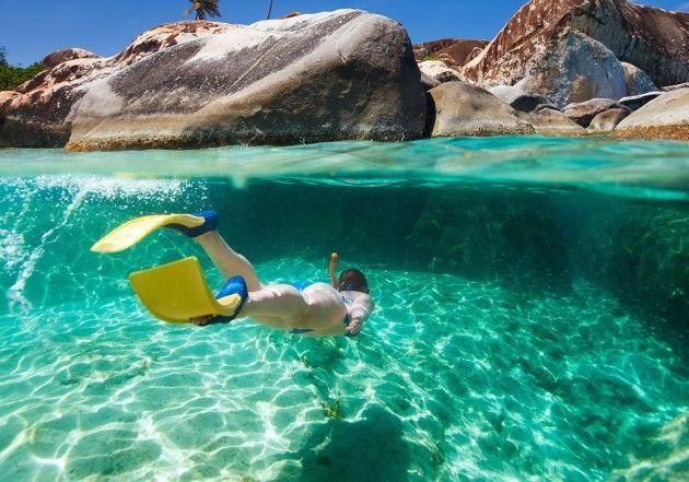 Best snorkeling spots in Sydney   Concrete Playground
