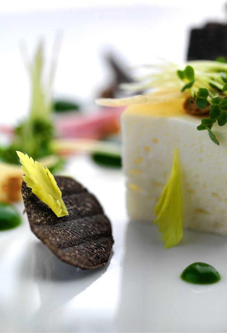 The greenhouse restaurant dublin - Http Donnacoulling Com 2012 11 19 Restaurant