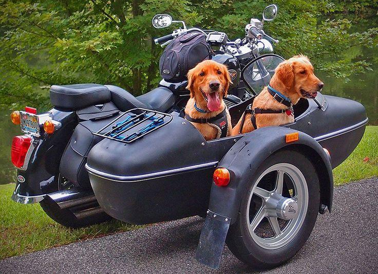 30 coole Beiwagen-Motorräder – TheMindCircle