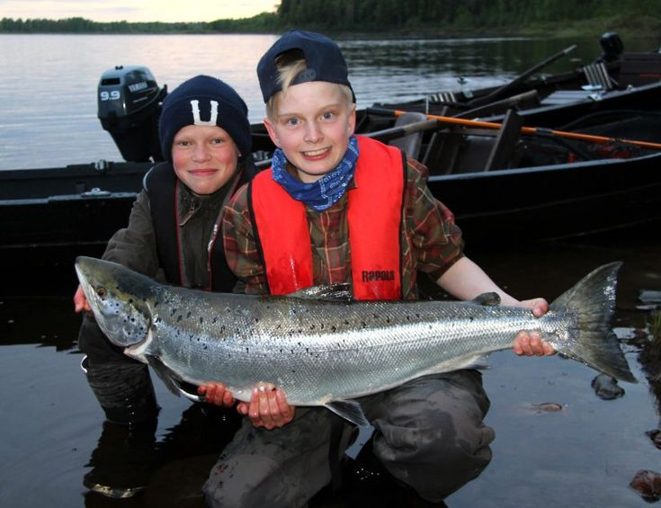 Salmon fishing in Tornio River in Lapland in Finland is good holiday activity for families